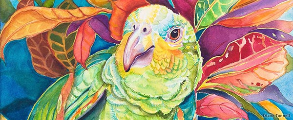 big island parrot painting